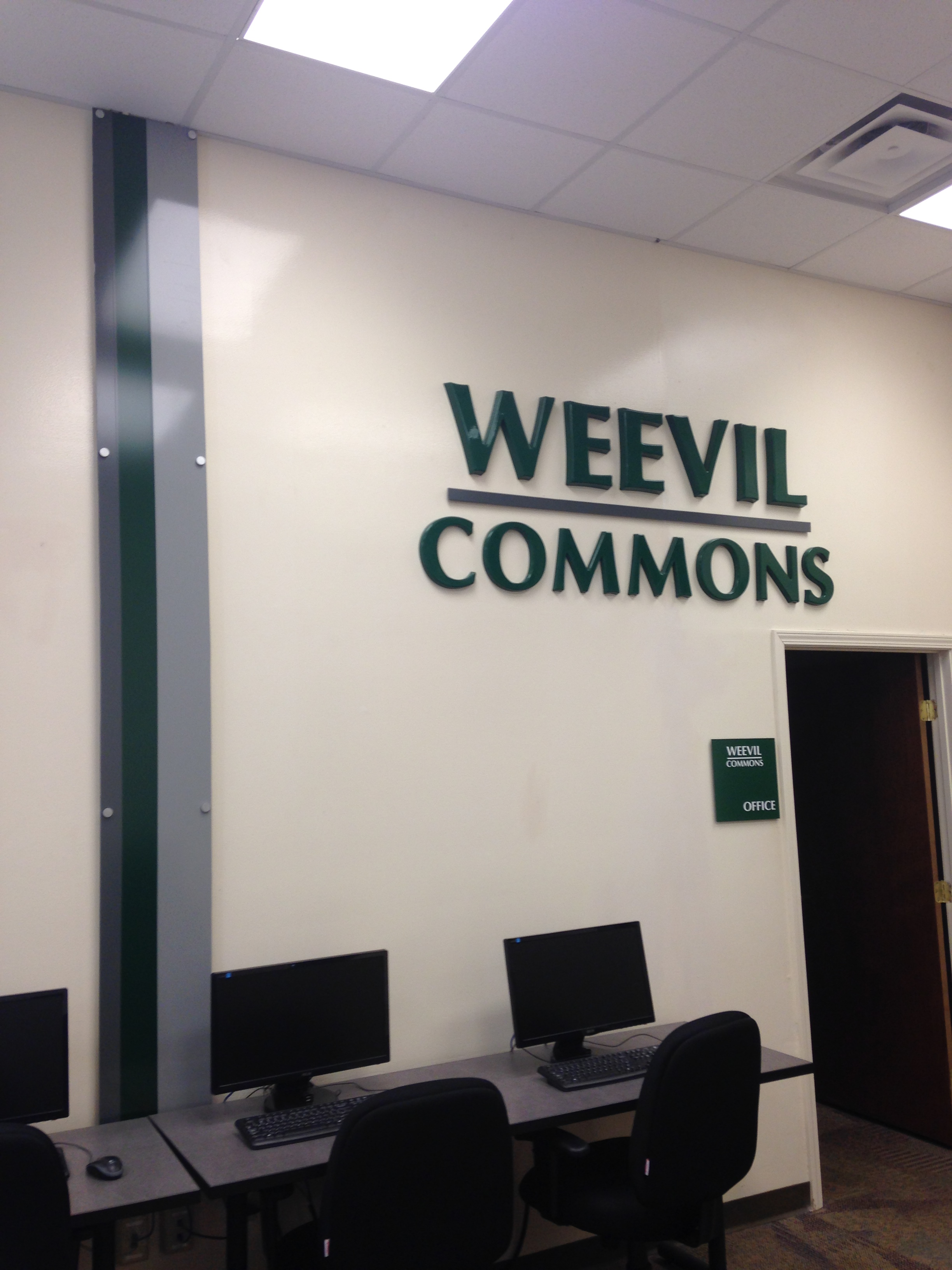 Weevil Commons